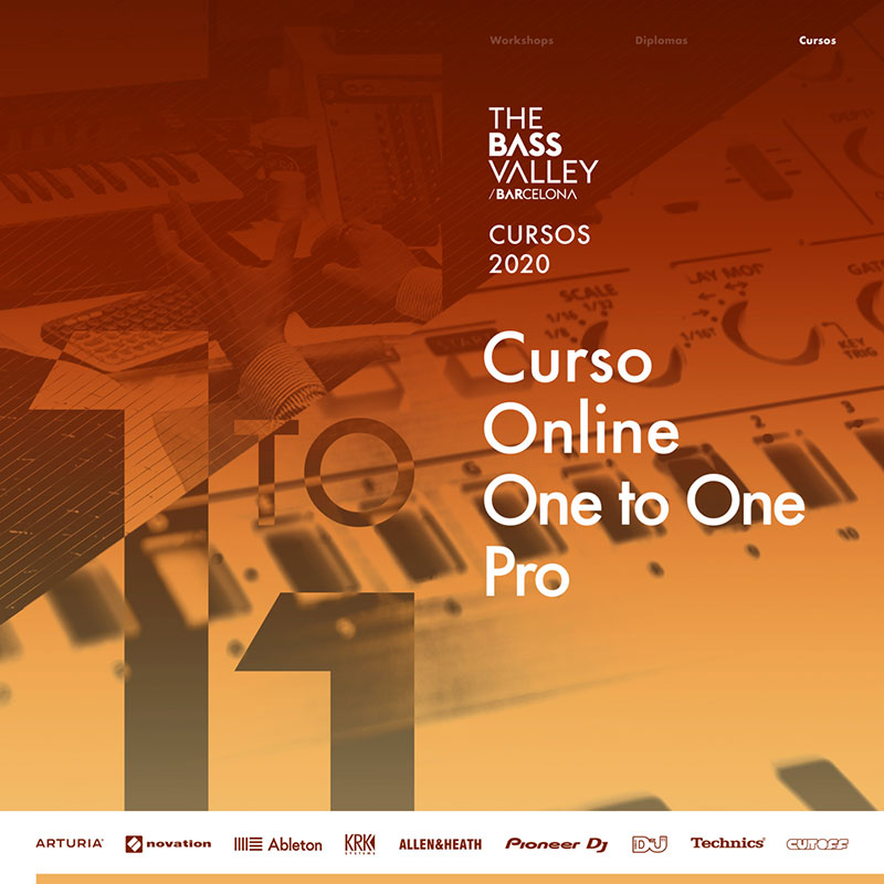 thebassvalley onetoonepro c - The Bass Valley
