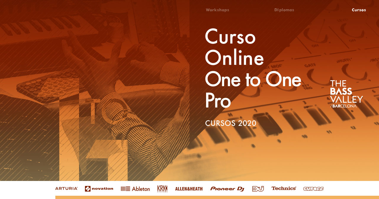 thebassvalley onetoonepro r - Curso Online One to One PRO